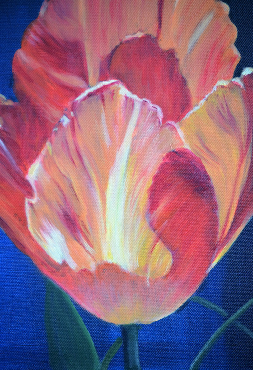 Tulip Flames - Painting by Sandra Cattermole