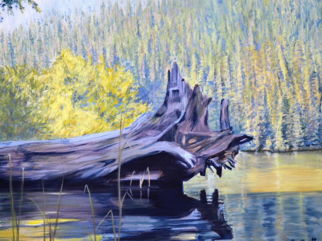 Nahatlatch Lake