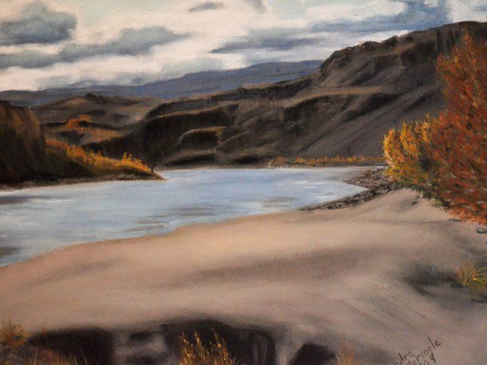 Fraser River in Summer